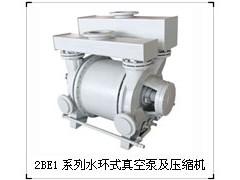 专业生产2BE1系列水环真空泵及压缩机—淄博博山天体真空设备