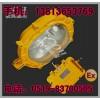 厂家热销【防爆泛光灯(ExdⅡB)PD-GB6001】