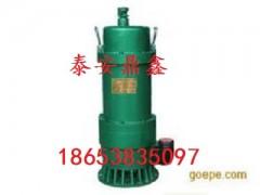 BQS25-10-2.2隔爆潛水排沙電泵廠家