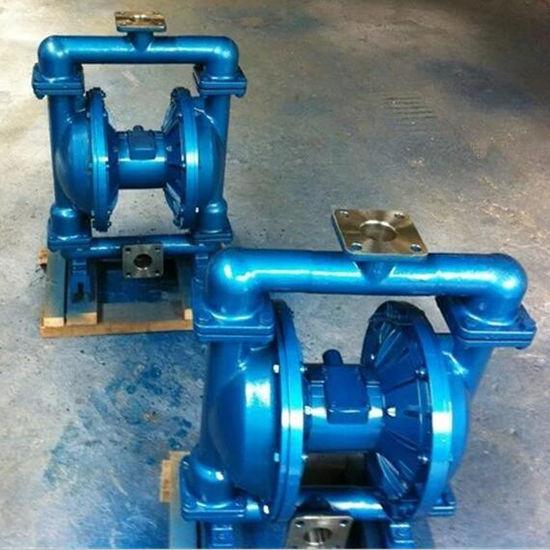 隔膜泵 (20)