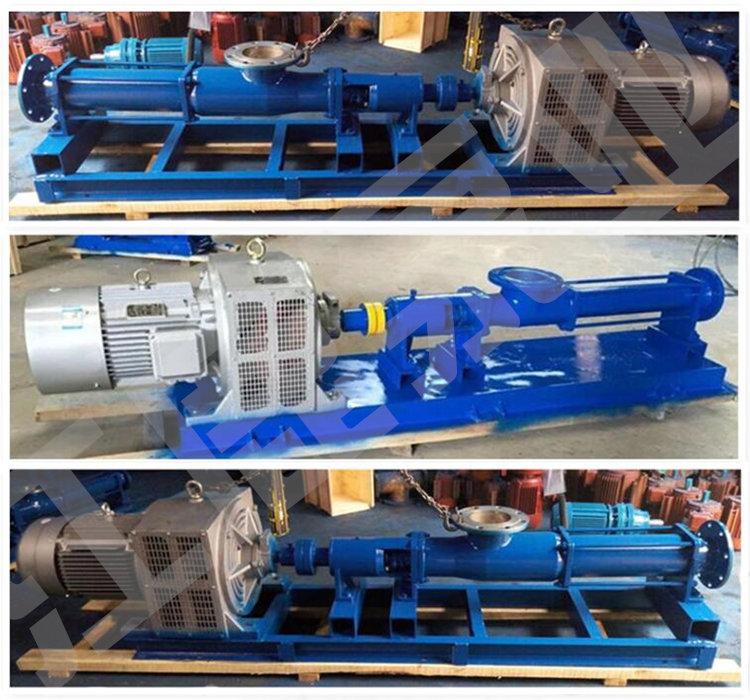 G型螺杆泵 (19)