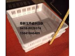 阜新水豆腐成型盘批发零售