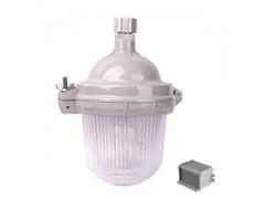 NFE9112防眩应急泛光灯